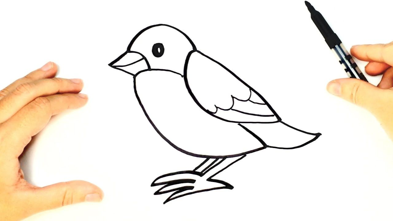 How To Draw A Bird For Kids Bird Drawing Lesson Step By Step Bird Drawings Birds For Kids Drawing For Kids