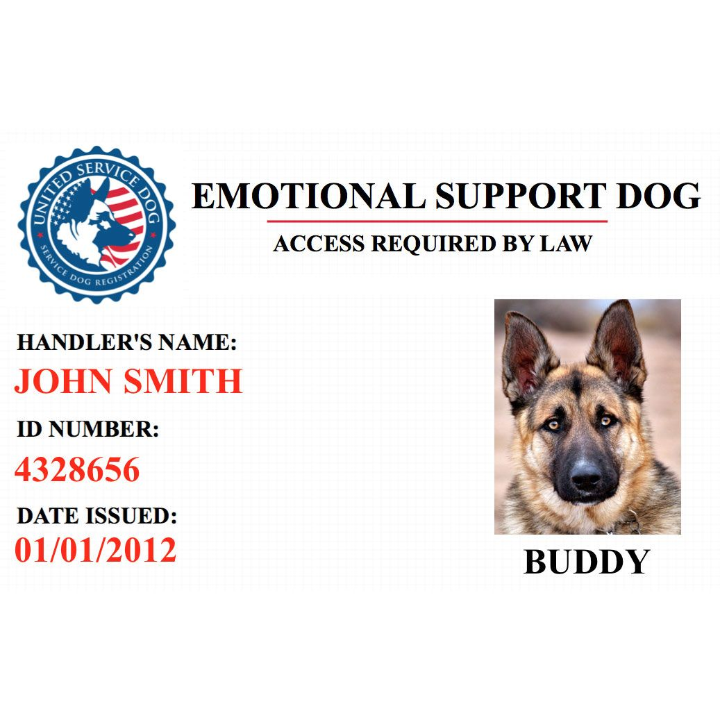 Emotional Support Animal Identification Card United Service Dog Service Dogs Emotional Support Animal Emotional Support Dog