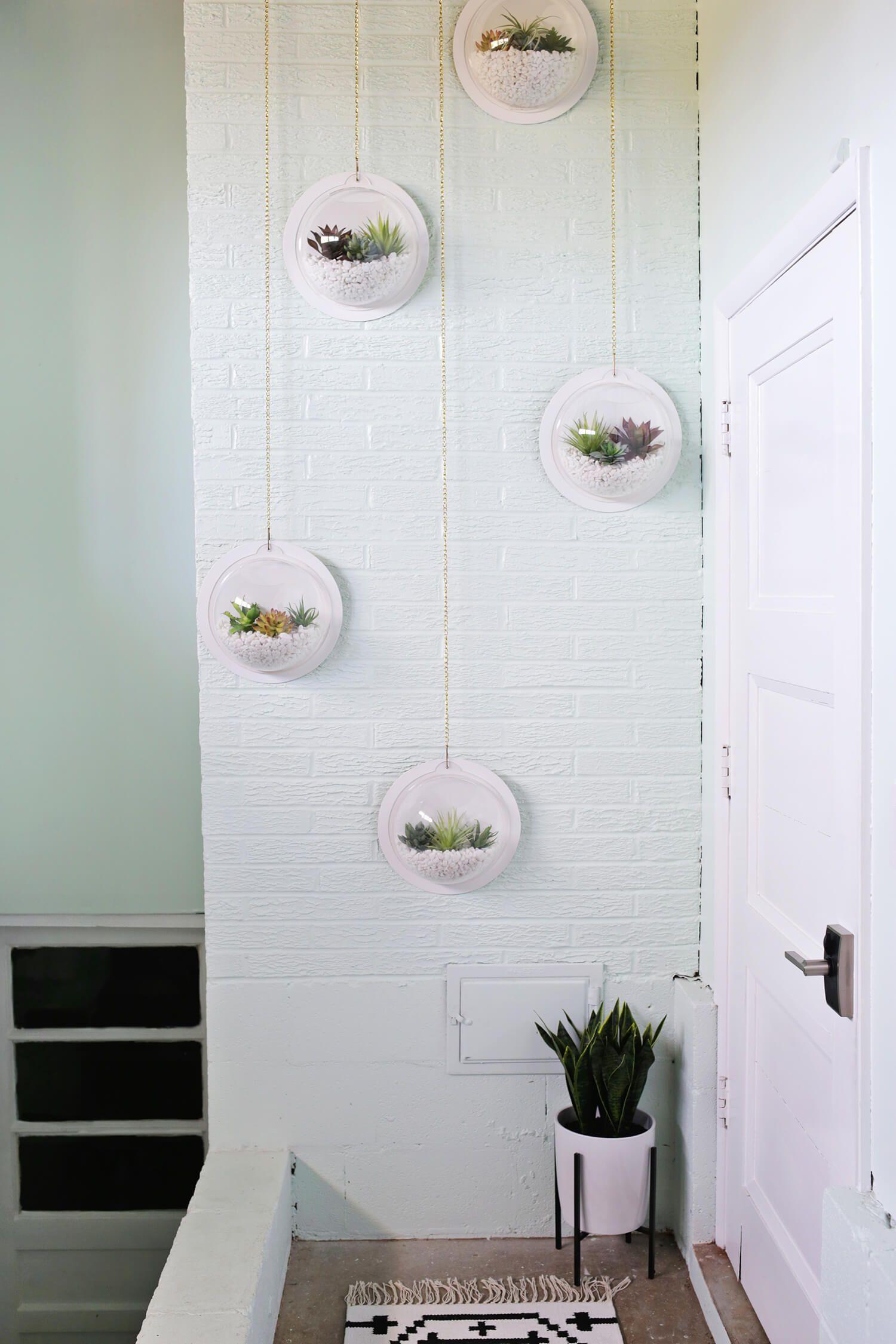 Hanging Terrarium Wall DIY | Hanging terrarium, Terraria and Walls