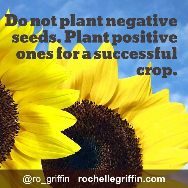 If you want success & happiness in your life, pay attention to seeds you're sowing.