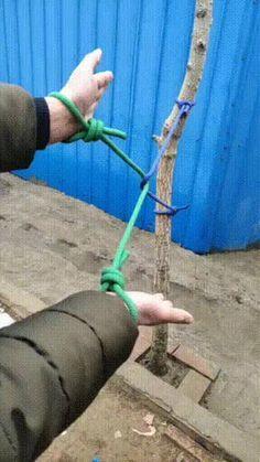 Rope trick #ropeknots