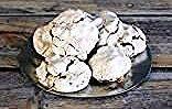 Forgotten cookies #forgottencookies nigella's forgotten cookies from www.thespruceeats.com #forgottencookies Forgotten cookies #forgottencookies nigella's forgotten cookies from www.thespruceeats.com #forgottencookies Forgotten cookies #forgottencookies nigella's forgotten cookies from www.thespruceeats.com #forgottencookies Forgotten cookies #forgottencookies nigella's forgotten cookies from www.thespruceeats.com #forgottencookies Forgotten cookies #forgottencookies nigella's forgotten cookies #forgottencookies