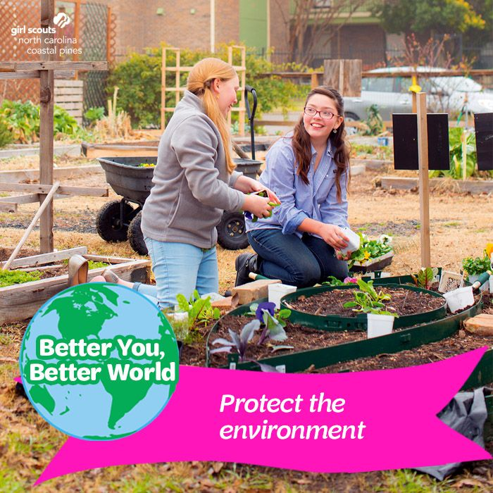 b8e301314d4a0ab7738d836c8dc8723c - How Does Gardening Help The Environment