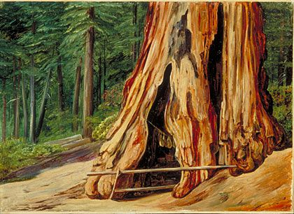 MARIANNE NORTH:     Home of an Old Trapper in the trunk of a Big Tree, Calaveras Grove, California