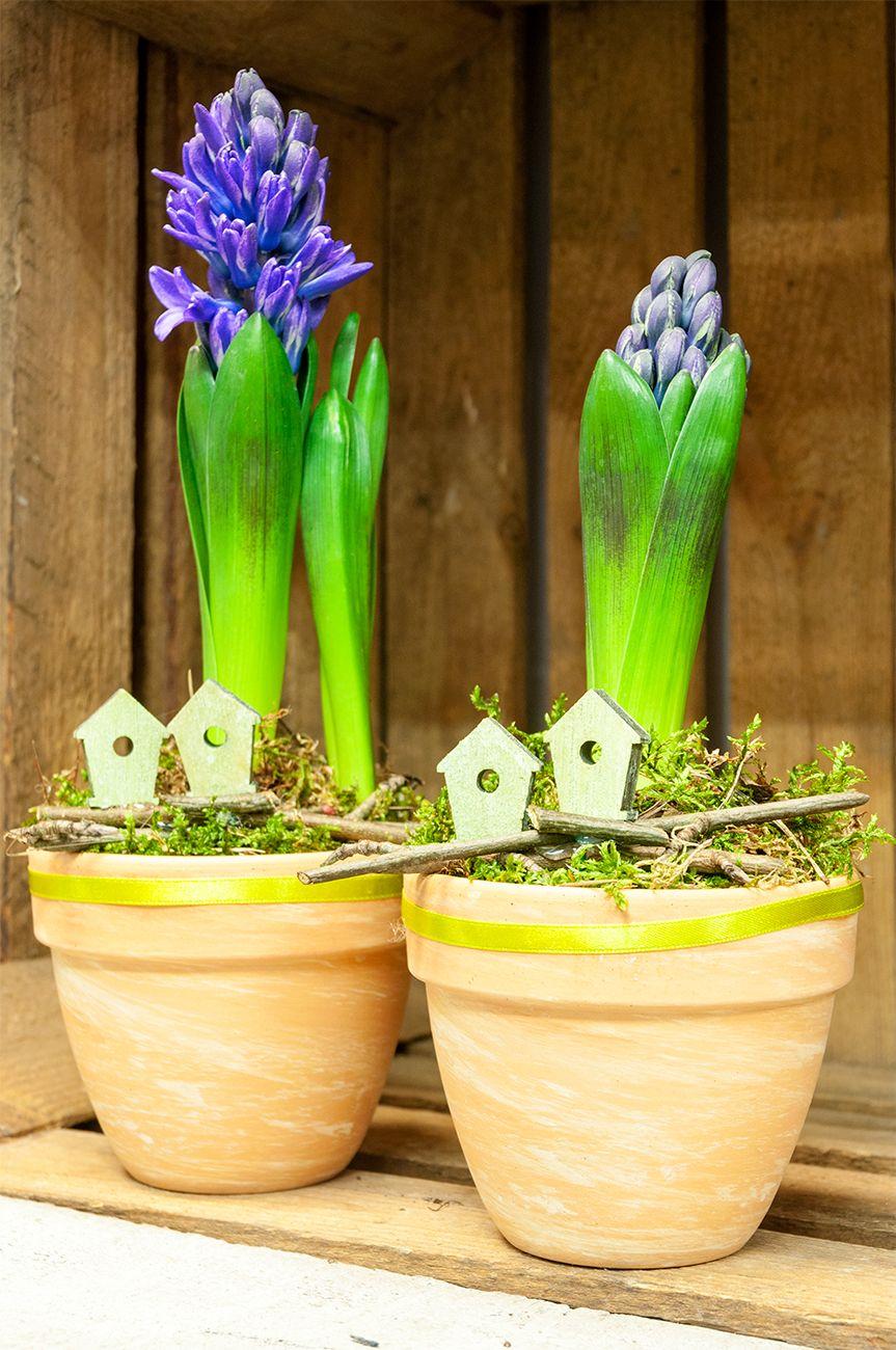 Pin On Wiosna W Domu I W Ogrodzie