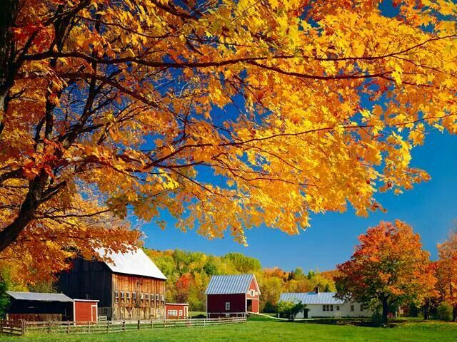 Country house in the Fall