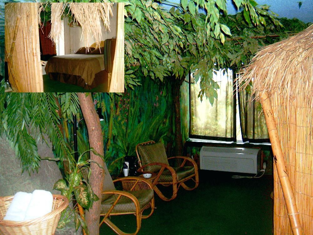 Jungle Themed Room Bedroom Theme Boys Rooms Design