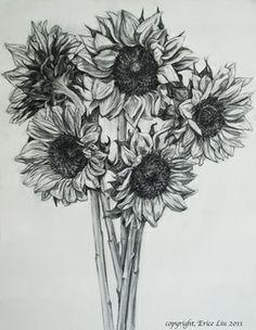 Sunflower Drawing Tumblr Buscar Con Google
