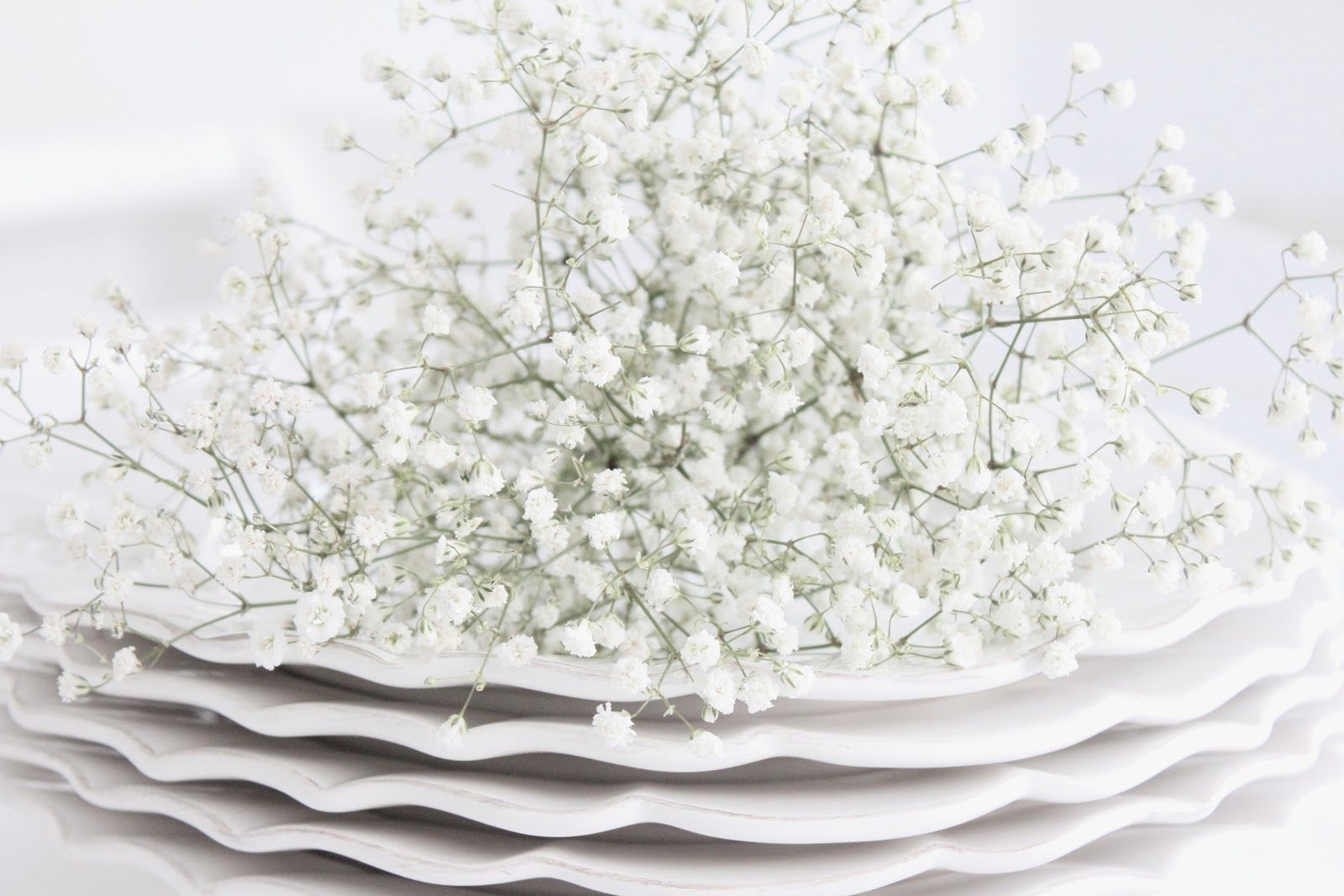White and Shabby: WHITE BLOSSOMS FOR A BRIGHT WEEKEND
