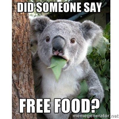 Did Somebody Say Food Cat Google Search Koala Meme Cute