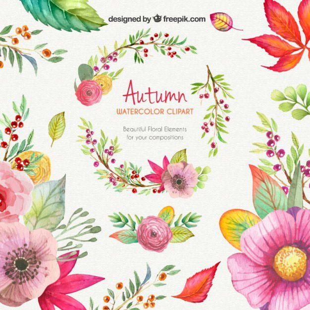 Dibujos con acuarelas de flores y vegetacin en vectores listas