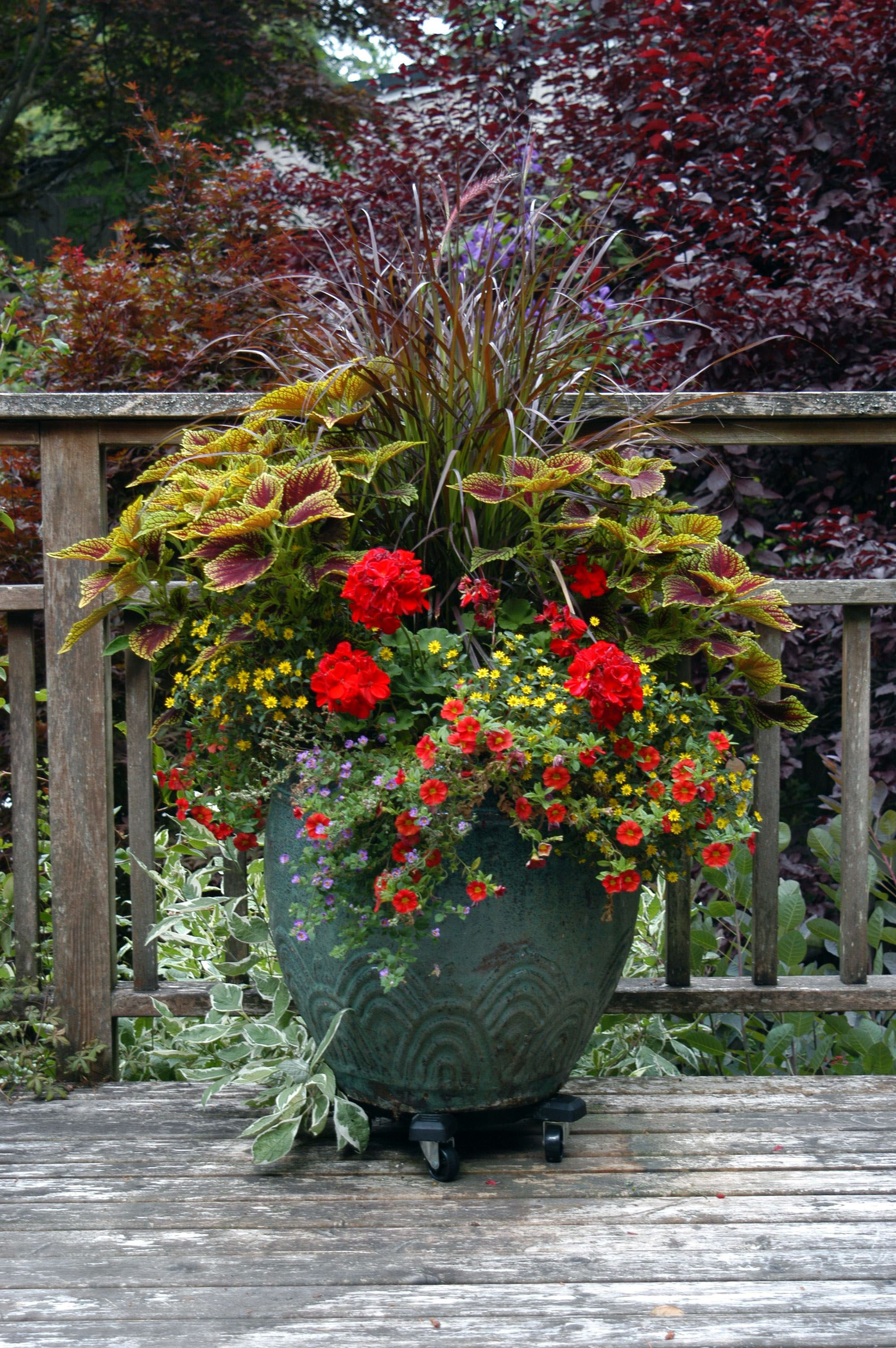 Stunning Ideas For A Large Garden Pot Uk Exclusive On Kennys Landscaping Ideas Large Outdoor Planters Outdoor Planters Large Garden Planters