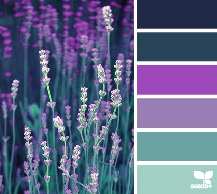 Inspiration De Mariage Couleur Pche Et Fard Joues Shauna Et Jordon Photography Dcouvrez Notre Lavender Color Scheme Color Schemes Seeds Color