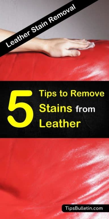 5 Smart Ways To Remove Stains From Leather Cleaning