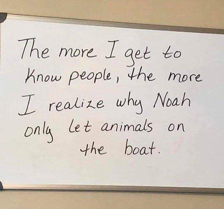 Reddit The Front Page Of The Internet Super Funny Quotes Funny Quotes Fun Quotes Funny