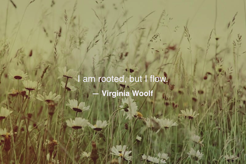 #Mindfulness #Simplicity #Practice #VirginiaWoolf #Modernism #Literature #Quotes #Quotations #Photography #Life
