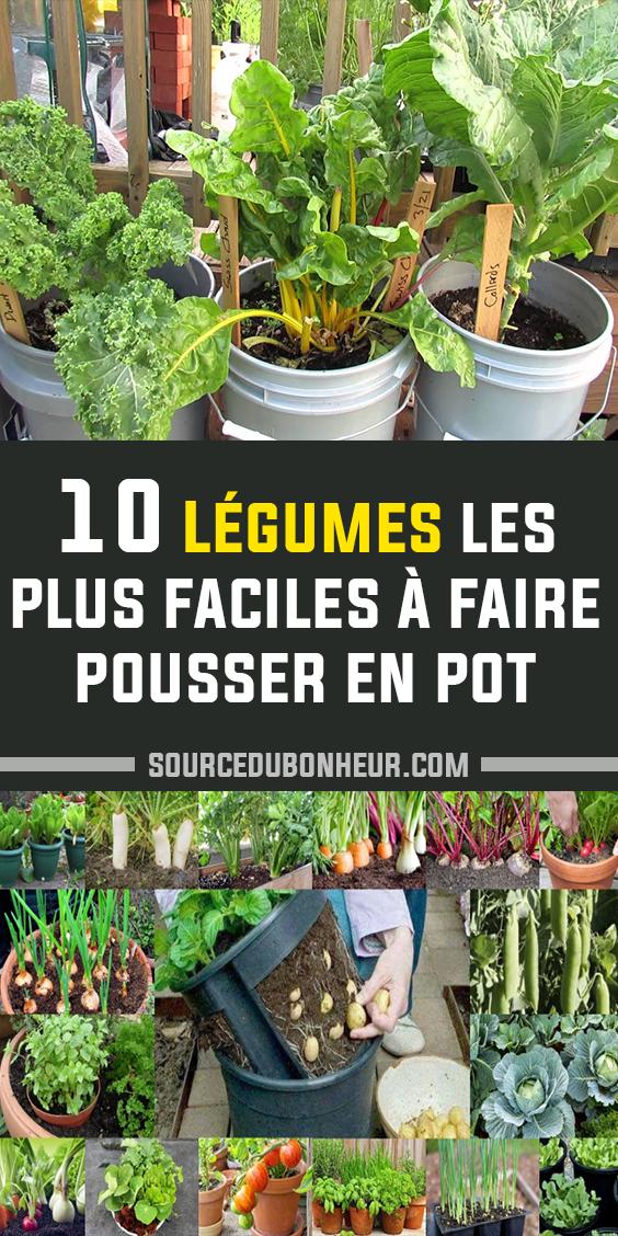 Les 10 Legumes Les Plus Faciles A Faire Pousser En Pot