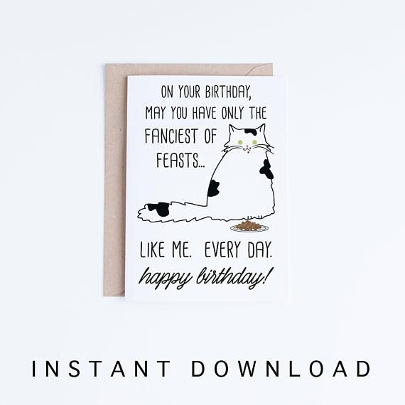 Funny Cat Birthday Cards Printables Black And White Persian Printable Bla