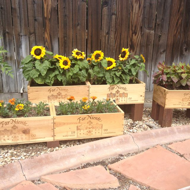 Turned My Old Wine Crates Into Planter Boxes Wine Box Garden Garden Planter Boxes Flower Boxes