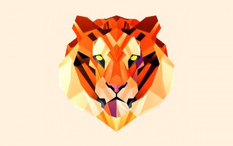 Polygon Vector Tiger Wallpaper Just Nice Stuff Pinterest