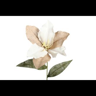lily- white burlap
