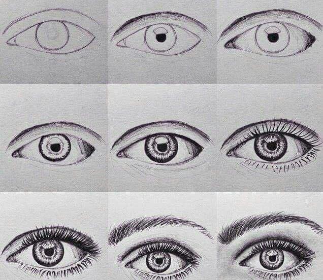 Ojo Sencillo Eye Drawing Drawings How To Draw Eyebrows