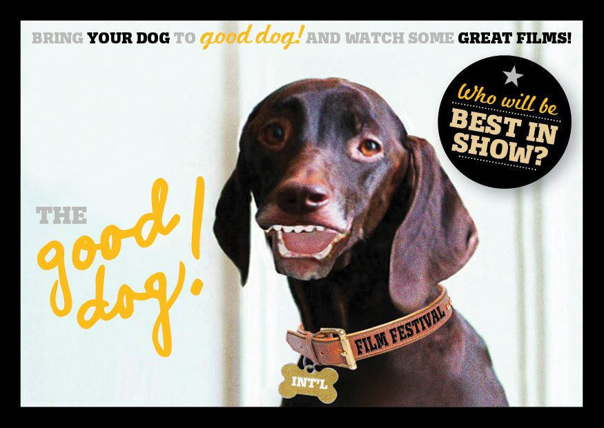 Good Dog International Film Festival 2016 December 2 3 Australian Dog Lover Best Dogs Dogs International Film Festival