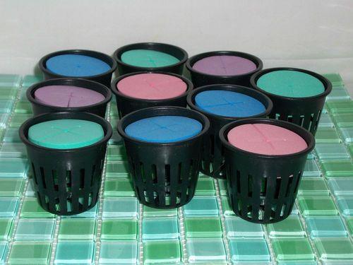 Set of 10 Hydroponic 2 inch Net Pots w Laser Cut Neoprene Clone Collar Inserts | eBay