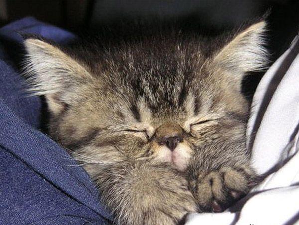 Sleepy Little Angel :)