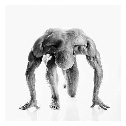 Alpha Male Fitness - men fitness #alphamale #malefitness #workout #alphaworkout #alphafitness