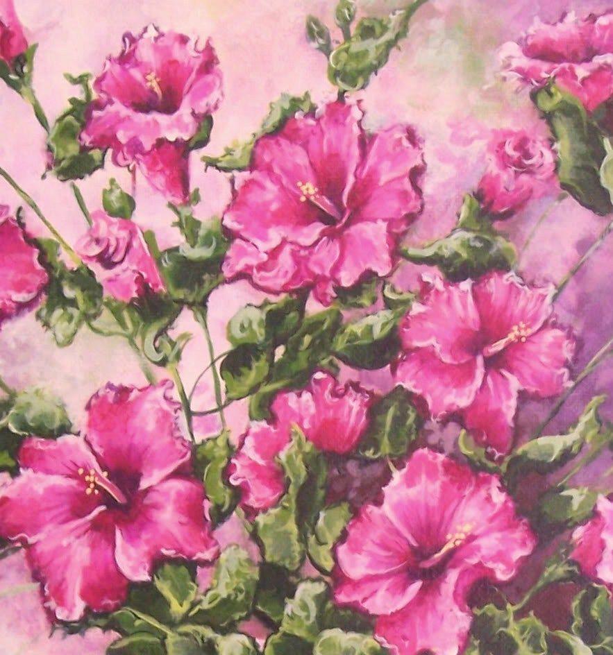 Hibiscus - Flower Art Beautiful Flowers