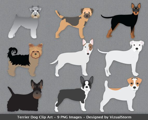 Terrier Dog Breeds Clipart British Dogs Pet Clipart Bull Terrier