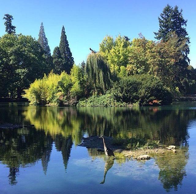 Laurelhurst Park, Portland, Oregon (With images) Oregon
