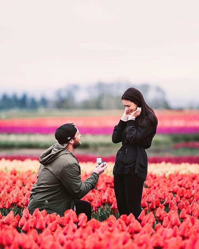 18 Romantic And Unique Wedding Proposal Ideas For Every: Romantic Red Maternity Photos In Portland