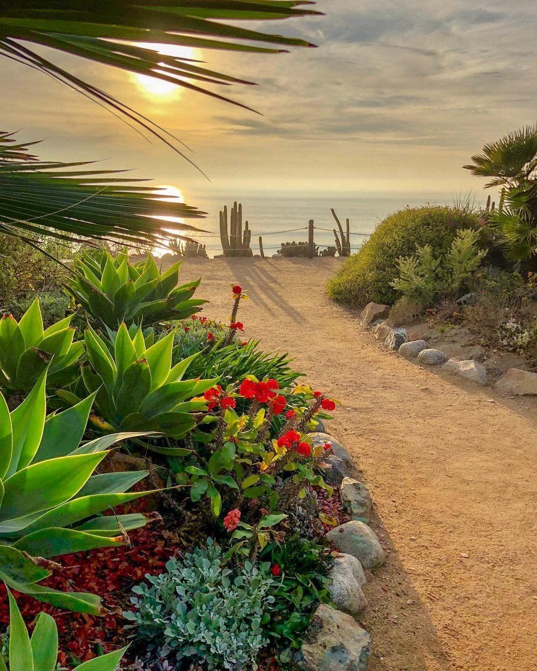 b8ef2c14083f3ab73803702557d8dfd1 - Self Realization Fellowship Meditation Gardens Encinitas