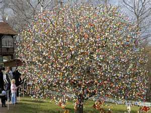 The Easter Egg Tree - A couple in Germany have over 10000 hand painted Easter Eggs on their tree!