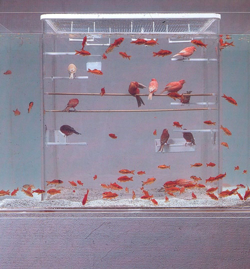 Robert Gligorov - H20 (2000) - Goldfish and taxidermy birds