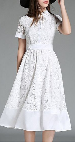 d8c7a6b67d Elegant Lapel Collar Lace Short Sleeves Midi Dress For Women