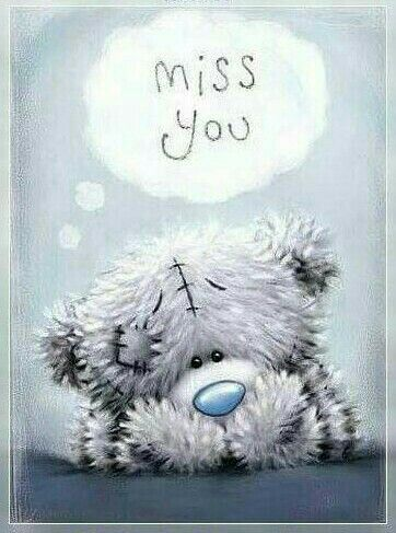 Miss You Teddy Bear Quotes Teddy Bear Bear