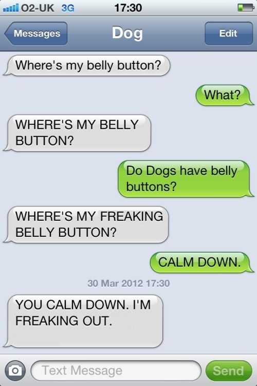 Dog Texts I M Laughing So Hard Reading All These Funny Dog