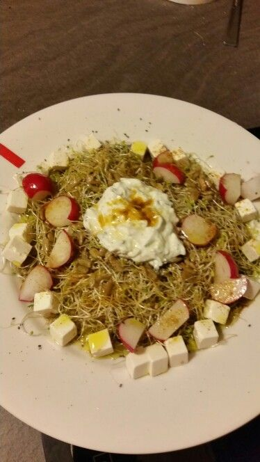 Ensalada de brotes de alfalfa con salsa griega de yogur  rabanitos queso feta,   curry, comino, y el mejor aceite de oliva ummm