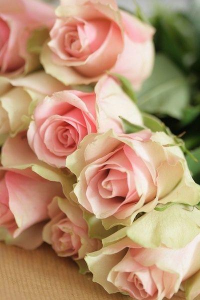 ♥Un romantique bouquet de roses♥