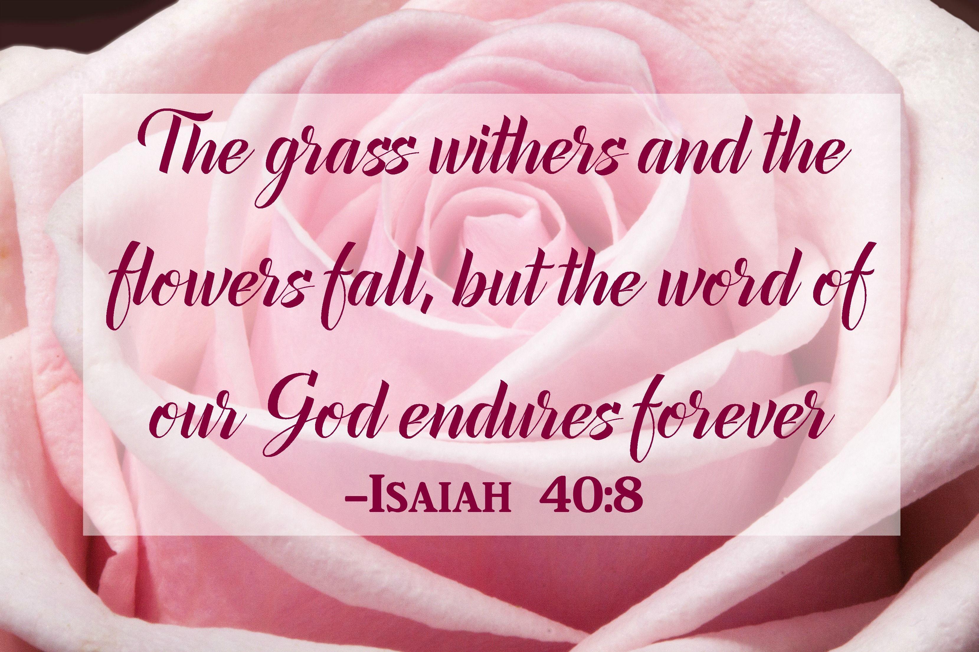 Bible Verse Isaiah 40 8 Mbleinhighheels
