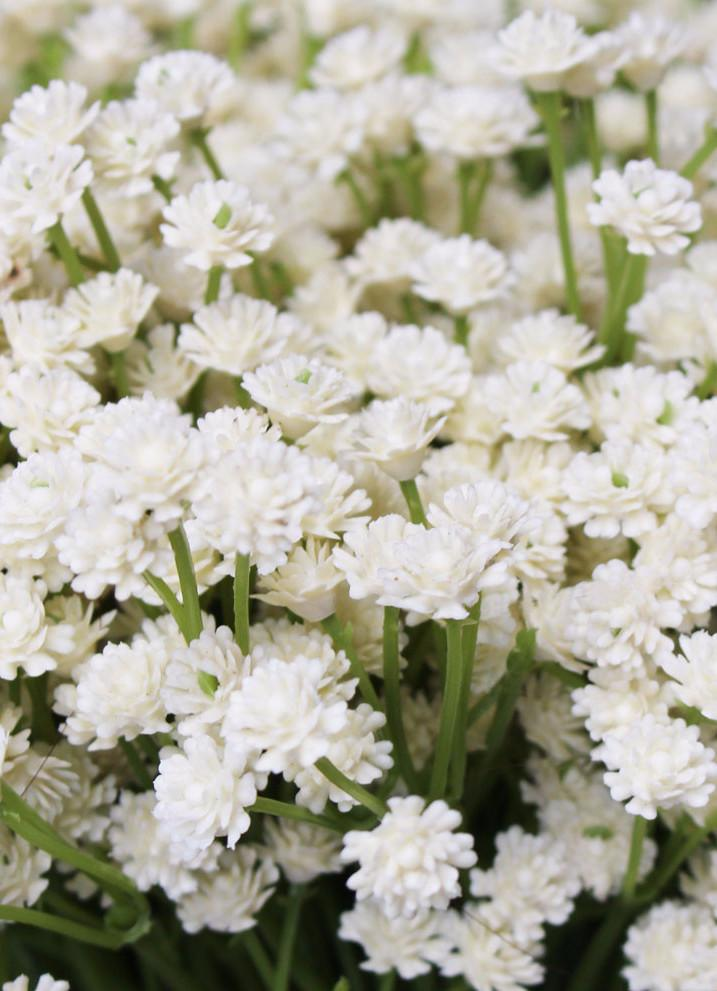 Real Touch Flowers Baby S Breath Bush In Beige Ivory Fake Flowers Real Touch Flowers Babys Breath