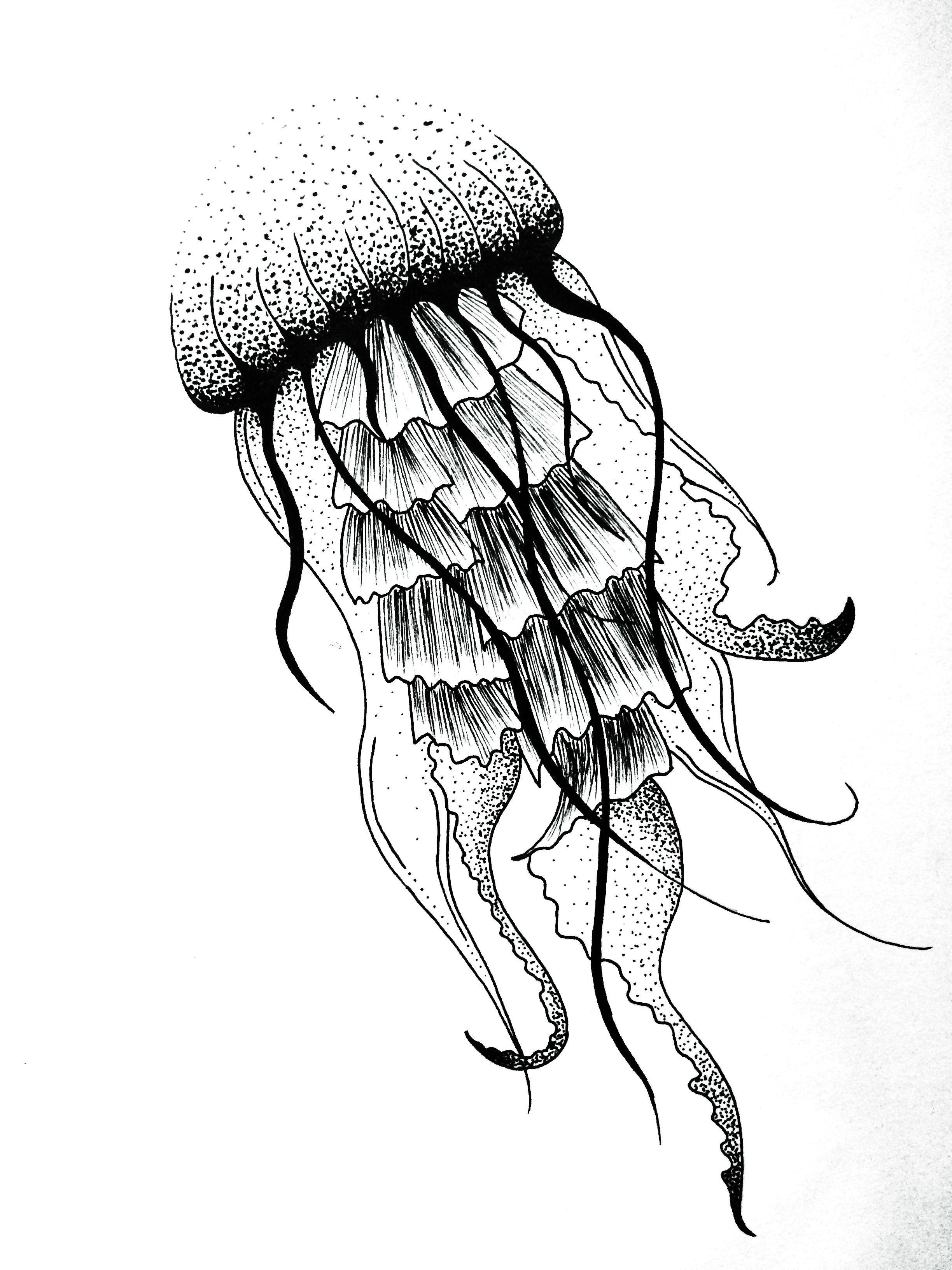 Jellyfish dotwork art design tattoo jules verne graphic