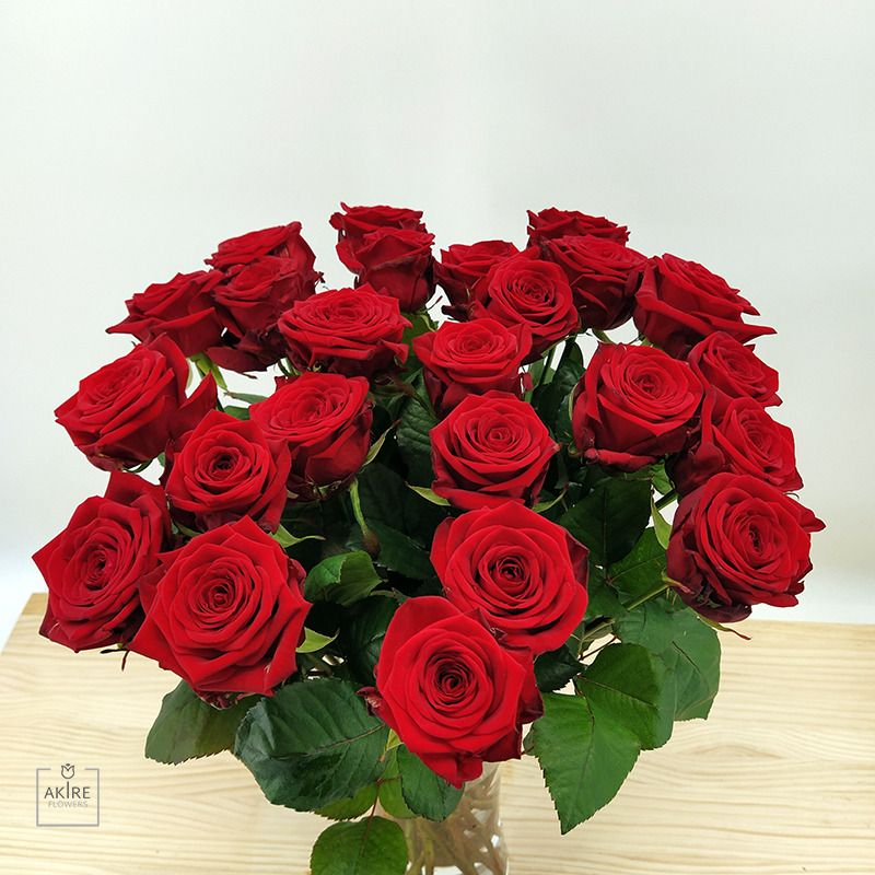 Solo Rosas 24 Rosas Rojas Red Naomi Rednaomi Rosaroja Valentin 24rosasrojas Rosas Rojas Rosa Roja Rosas