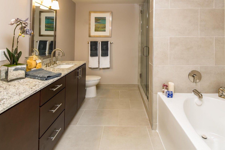 Elan 16forty Rentals Fort Lauderdale Fl Apartments Com Fort Lauderdale Fl Apartments For Rent Fort Lauderdale