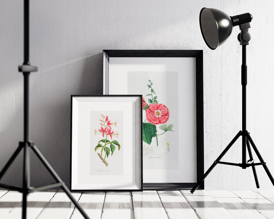 Free Vintage Art • Where to Find it + Exclusive Freebies