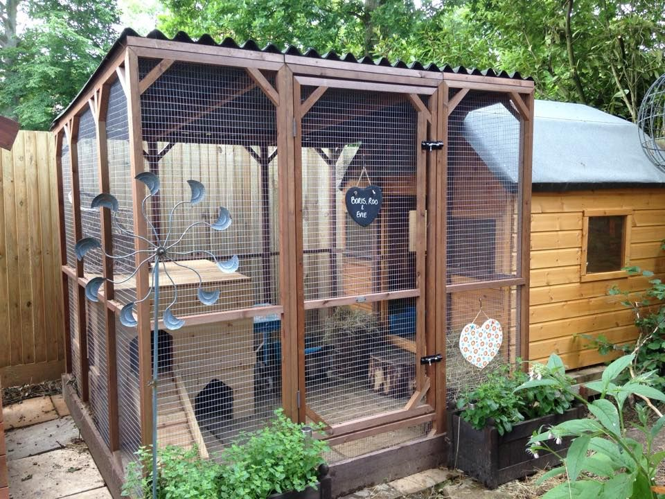 All sorts of rabbit housing idea for you to view great for Outdoor rabbit enclosure ideas