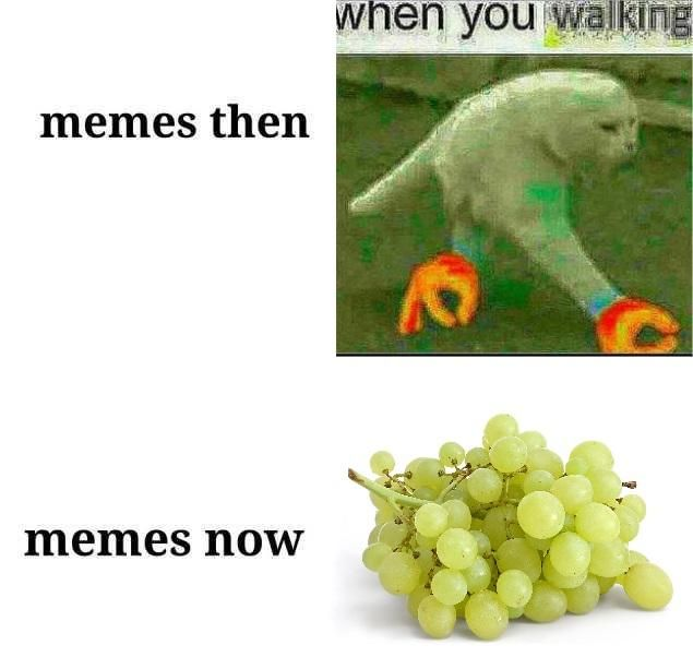 And They Re Better Lets Be Honest Here Dark Humour Memes Memes Dankest Memes